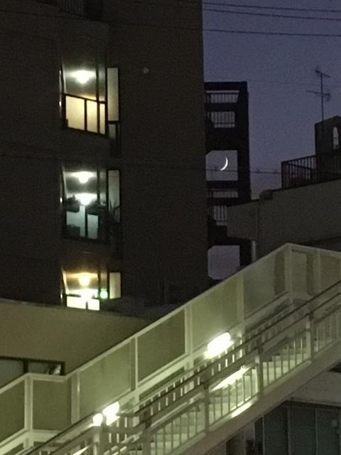 すき間の三日月.JPG